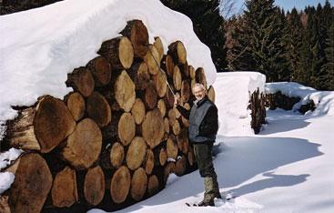 I legni dell'Azienda Agricola Longariva